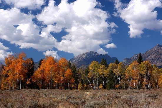 Podzim v Grand Teton